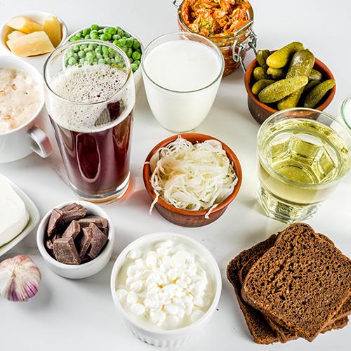 Exemples d'aliments probiotiques, y compris le yogourt, les cornichons et le kombucha