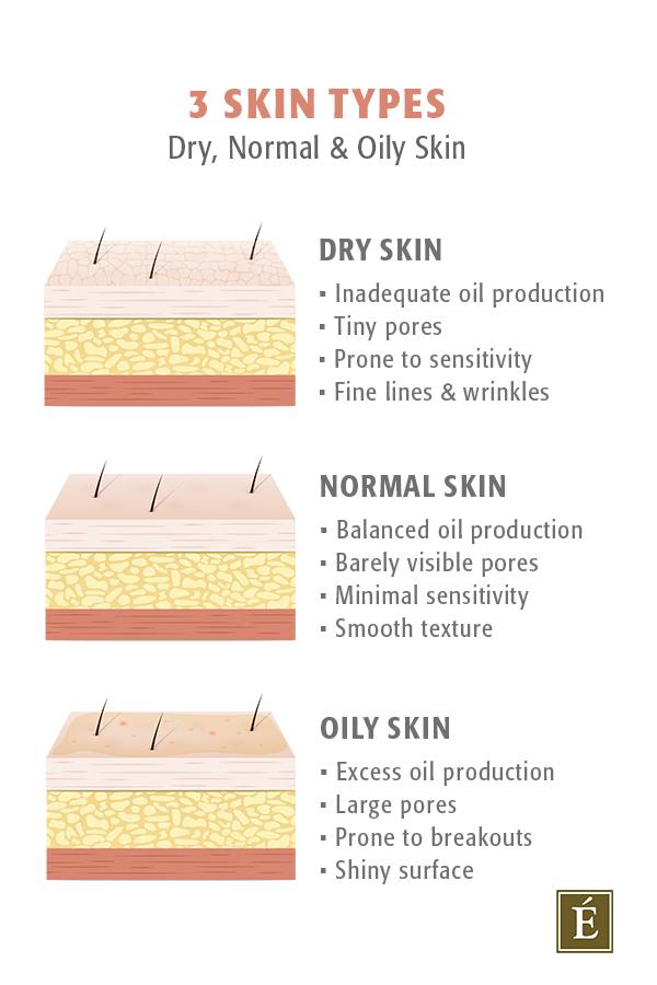types de peau infographique