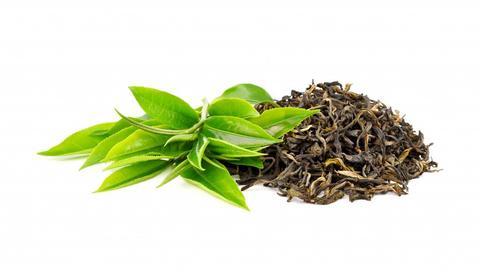 la caféine est un ingrédient botanique d'origine naturelle dans les soins de la peau avec des avantages